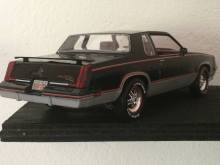83olds_7