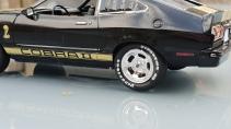 1976CobraII (10)